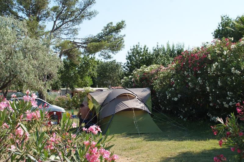 Emplacement - Emplacement Confort 80M² Maximum - Camping Port Pothuau