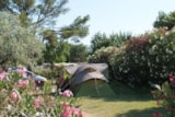 Pitch - Pitch :  GRAND CONFORT - Camping Port Pothuau