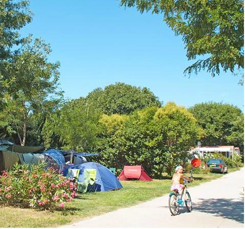 Emplacement - Emplacement Grand Confort  80 À 100M² - Camping Port Pothuau