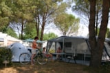 Pitch - Pitch - Camping de Vaudois