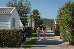 Establishment Camping De Vaudois - Roquebrune Sur Argens