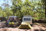 Pitch - Pitch Caravan / Large Tent + 1 Car +10Aelectricity - Camping Le Parc