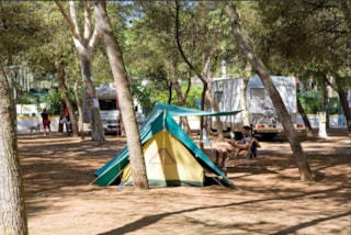 Pitch: car/motorbike + tent > 3 places /caravan or camping-car + electricity