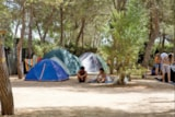 Pitch - Pitch Small tent + Car + electricity - Camping Santa Maria di Leuca