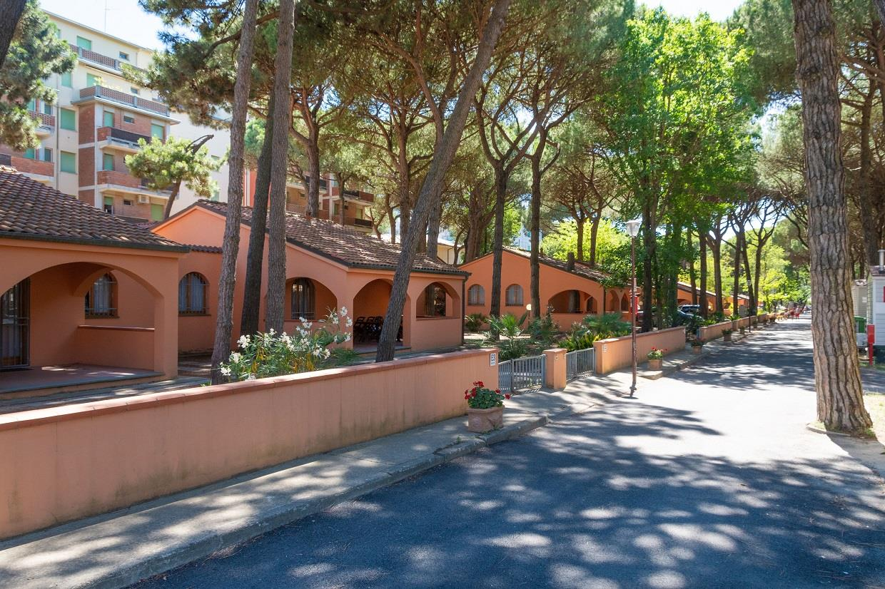 Location - Bungalow Marina 3 - International Camping Mare e Pineta