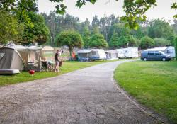 Pitch with caravan / trailer tent