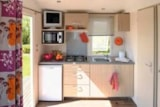Rental - Mobil-home SUPER ASTRIA B (HALF SHADED), per week or Overnight stays - Le Bois du Coderc (Ouvert à l'année)