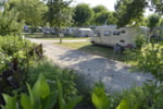 Pitch - Privilege Package  car, electricity 10A, 150-170m² - Flower Camping La Venise Verte