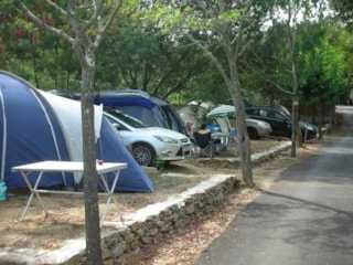 Package pitch, vehicle, tent + electricity 6A
