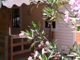 Rental - Mobilhome le Lavandou - sheltered terrace 10m² (air-conditioning) Max 2 adults - Camping Lou Cabasson
