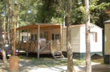 Rental - Mobilhome PAVONCELLA  friday/friday - Camping Village iNTERNATiONAL St. Michael