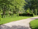 Pitch - Nature Package (without electricity) - Camping Le Colombier