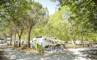 Platinum Pitch: caravan or camping-car + water and drainage point + 10A electricity