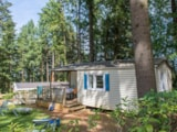 Rental - Ready to go Weekend - YELLOH! VILLAGE - PAYRAC LES PINS