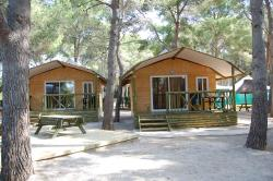 Lodge (2 Bedrooms)