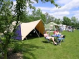 Pitch - Pitch - Camping Baalse Hei