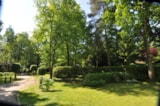Pitch - Pitch - Camping Floreal Het Veen