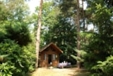 Rental - Lodge - Camping Floreal Kempen