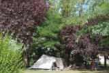 Pitch - Nature Package (1 tent, caravan or motorhome / 1 car) - Flower Camping Le Château