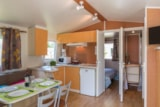 Rental - Mobile home CLASSIC 27 m² / 2 bedrooms + Half-covered terrace (2004) - Flower Camping de Mesqueau