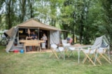 Pitch - Pitch + Tent + Electricity - Camping Les Tournesols