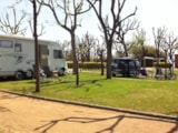 Pitch - Standard Pitch + 1 vehicle + tent - CAMPING GLOBO ROJO BARCELONA