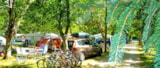 Pitch - Pitch + vehicle + electricity - CAMPING LANDES BLEUES