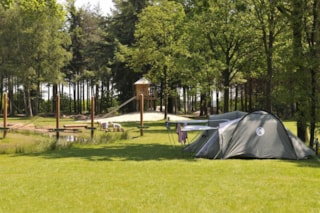 Wildenberg ( For Campers)