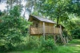 Pitch - Pitch with tree house - RCN Vakantiepark de Noordster