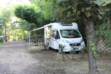 Pitch - Pitch Tent - Seven Hills Camping & Village