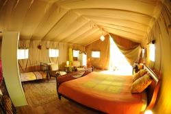 Accommodation - Safari Tent 6 Persons - Le Grand Bois