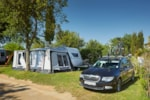 Pitch - Pitch A (100/110 m²) with dog allowance = car + tent/caravan or camping-car - Camping Aquarius