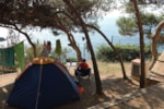 Pitch - Pitch: 1 vehicle + tent/caravan or camping-car - Camping Palamós