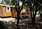 Rental - Mobilhome TEXAS 32m² air-conditioning (3 Bedrooms + sofa bed) - Camping Le Garrigon