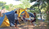 Pitch - Pitch - tent or camping-car (max 4 m) - Camping Le Méditerranée
