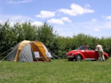 Pitch - Camping Pitch including 6 amp electricity (TX) - Camping Belle Vue