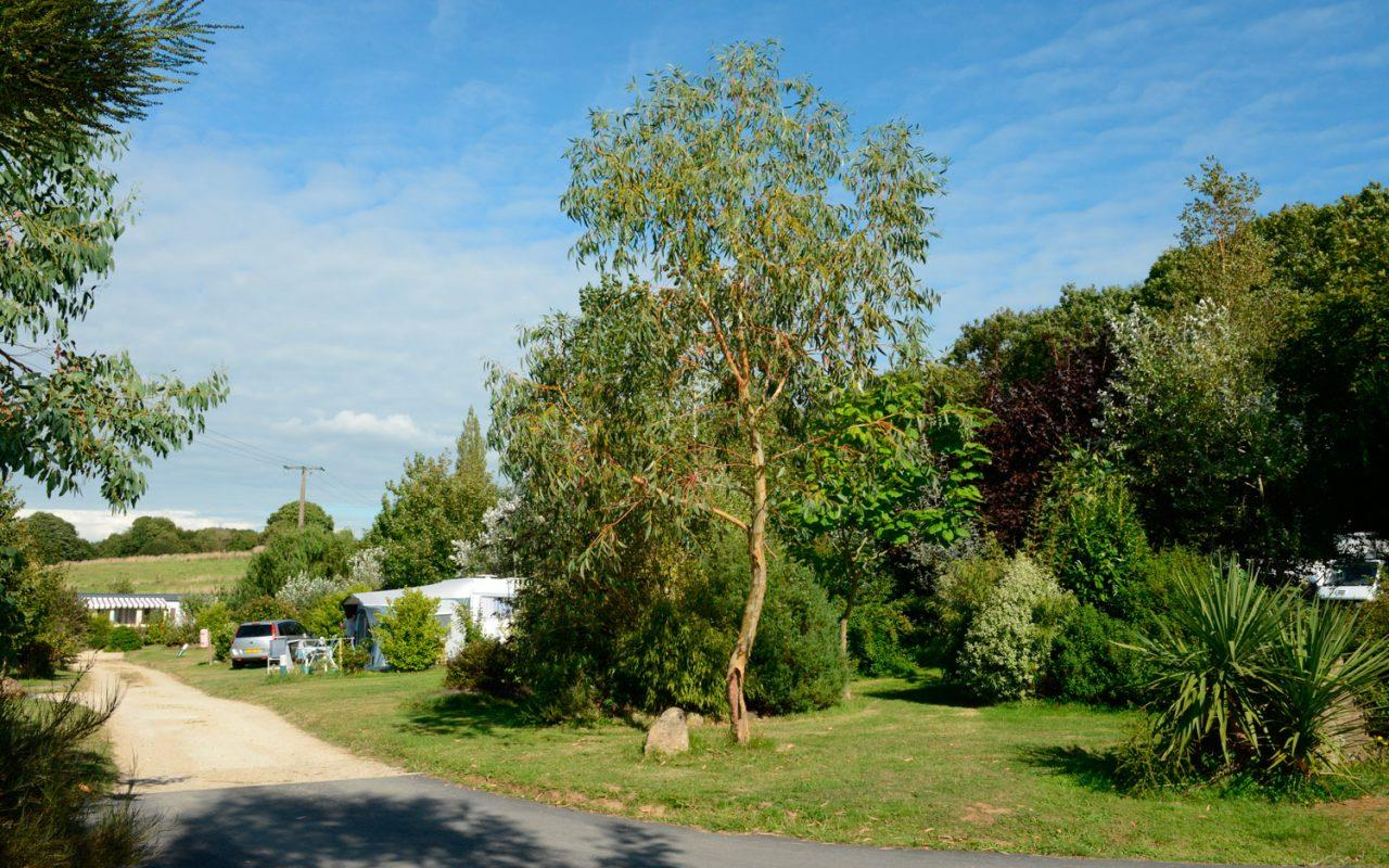 Emplacement - Emplacement - Camping Les Peupliers