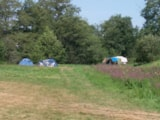 Pitch - Campingspots - Zone without cars - Camping La Chatonnière