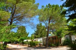 Establishment Camping Sainte-Victoire - Beaurecueil