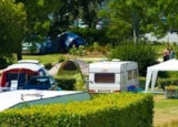 Pitch - Pitch (1 tent, caravan or motorhome / 1 car / electricity 10A / water) - Flower Camping LE CABELLOU PLAGE