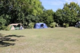 Pitch - Classique Pitch (1 Tent, Caravan Or Motorhome / 1 Car / Electricity 10A) - Castel Le Petit Trianon