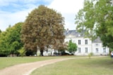 Pitch - Pitch Classique - Front Of The Castle (1 Tent, Caravan Or Motorhome / 1 Car / Electricity 10A) - Castel Le Petit Trianon