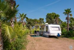 Pitch - 'Deluxe' Prestige (Caravan/Campervan, Attention: No Tent), Large Pitch With Private Bathroom - Esterel Caravaning