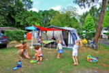 Pitch - Pitch - 2 tent or caravan - 1 vehicle - Camping Les Acacias