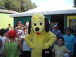Entertainment organised Camping Les Acacias - MESSANGES
