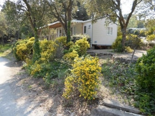 Cottage B - 2 Bedrooms (Ohne Klimaanlage, 29M²-30M²)