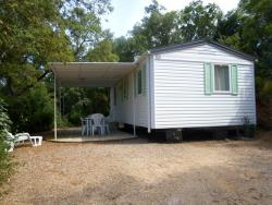 Cottage D - 2 Bedrooms (Without Airconditioning, 28M²-30M²)