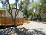 Wheelchair friendly Castel Domaine De La Bergerie - Roquebrune Sur Argens