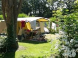 Pitch - Comfort Package (1 Tent, Caravan Or Motorhome / 1 Car / Electricity 10A) - Flower Camping le Kergariou