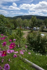 Pitch - Pitch Trekking Package by foot or by bike with tent - Camping Sites et Paysages L'ÉTANG DE LA FOUGERAIE